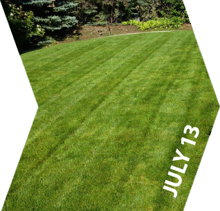 GroundKeeper - Get the 'Green Lawn' Bragging Rights - July 13