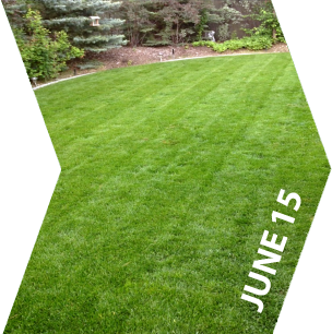 GroundKeeper - Get the 'Green Lawn' Bragging Rights - June 15