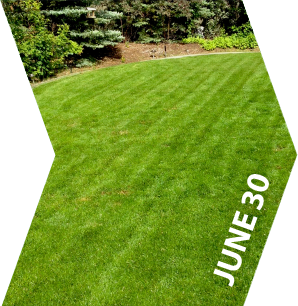 GroundKeeper - Get the 'Green Lawn' Bragging Rights - June 30